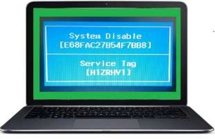 remove dell Inspiron 13 7347 hdd password